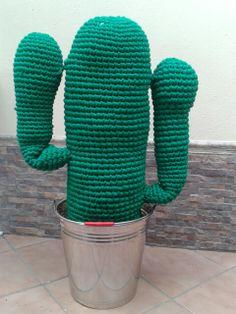 Cactus gigante.
