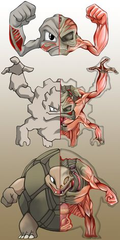 PokeNatomy- Geodude Evolution by Christopher-Stoll