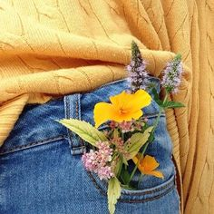 in need of a cute yellow sweater collection and some high waisted jeans - Gelb