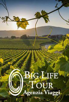 I vini della Franciacorta - . Tutti i tuoi eventi su ViaVaiNet, il portale degli eventi più consultato per il tempo libero nella provincia di Rovigo e nella Bassa Padovana