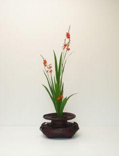 Ikebana by Sensyou: Montbretia