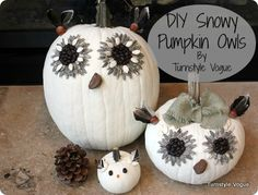 Snowy Pumpkin Owls.  Using your uncarved pumpkins from Halloween & Thanksgiving and transitioning them into cute winter decor.