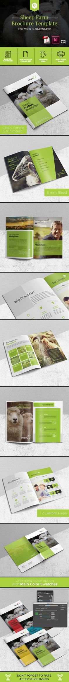 Sheep Farm Brochure — InDesign INDD #flyer #indesign • Available here → https://graphicriver.net/item/sheep-farm-brochure/19591943?ref=pxcr