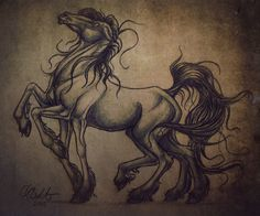 Sleipnir is Odin's eight legged horse that he rides throughout the 9 ...