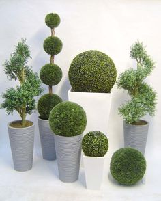 We won't lie, you do have to keep them up. But a little bit of trimming and clipping is nothing compared to what they give back. So check out these DIY garden topiary projects, get one (or two!) started of your own, and send us photos of your creations!