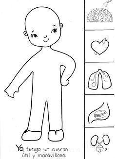 actividades para preescolar el cuerpo humano - Buscar con Google