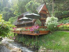 Krisdadoi Resort and Park in Chiang Mai
