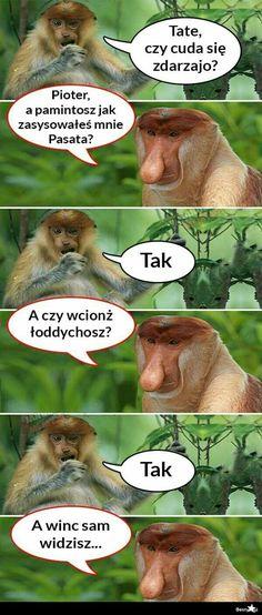 Funny Mems, Wtf Funny, Best Memes, Fnaf, Humor, Haha, Fotografia, Rage, Poster