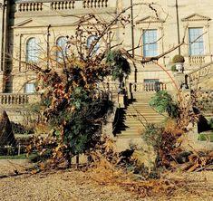 Harewood House, Chatsworth House, Castle Howard, Festival Image, British Flowers, Flower Festival, Grand Homes, Terrace Garden, Land Art
