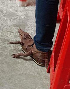 Next level Crocs