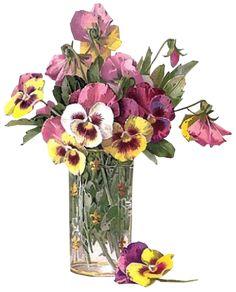 http://www.frizou.org/gifs/a-fleurs/?action=detail