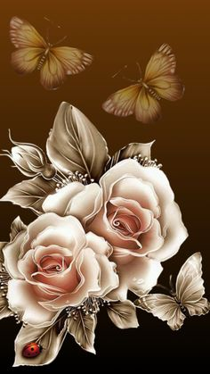 Rest your wings. Rose Flower Wallpaper, Butterfly Wallpaper, Flower Backgrounds, Wallpaper Backgrounds, Wallpaper Ideas, Beautiful Flower Drawings, Beautiful Flowers Wallpapers, Beautiful Roses, Rose Art