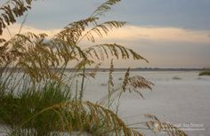 Bowditch Point Fort Myers Beach