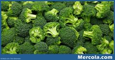 Broccoli has been widely studied for its many health effects, and research shows…