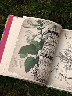 A könyv megtalálható liliom.