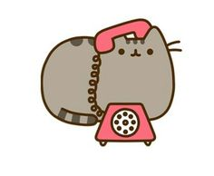 Pusheen at phone