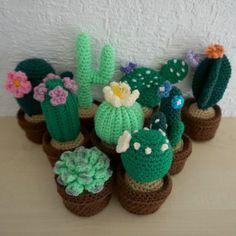Uncinetto di succulente Cactus uncinetto di TheWoolyWarrior