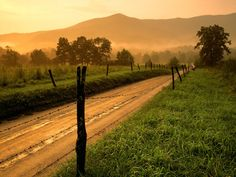 Great Smoky Mountains National Park is a National Park in Gatlinburg. Plan your road trip to Great Smoky Mountains National Park in TN with Roadtrippers. Great Smoky Mountains, Cades Cove, Merida, Country Life, Country Roads, Country Living, Country Music, Country Lyrics, Southern Living