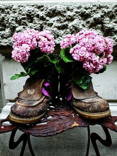 photography, flowers, boots, art for sale, home decor, wall art