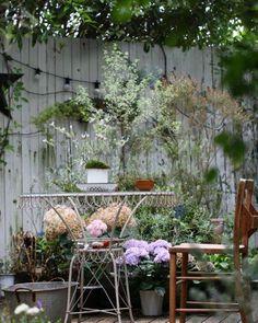 ・ *my garden* ・ *こんにちは* ・ 庭時間… 時にはお茶でも飲んでまったりとね((*´∀︎`)) ・ よい1日を… ・ *・゜゚・*:.。..。.:*・・*:.。. .。.:*・゜゚・* ・ #garden#flowerslovers#gardening#home#instagarden#instapic#gardenpic#nature#fleur#flower#natural#flowerstagram#flowergarden#terrace#ガーデニング#ガーデナー#ガーデン#花#暮らし#ナチュラルガーデン#マイガーデン#庭作り#ナチュラル#庭#花フレンド#花のある暮らし#ザ花部#はなまっぷ#庭いじり#テラス http://gelinshop.com/ipost/1522931484871910124/?code=BUiih3dDGLs