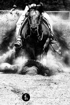 //dust //power //emotion - reining in black and white on Behance