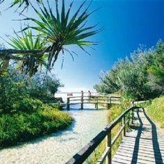 Eli creek, Fraser island! QLD