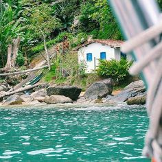 Praia da Fome - Ilhabela - São Paulo - Brasil 9⃣9⃣ 🏝 🐶 🍌 📷 😎 🌞 〰〰〰〰〰〰〰〰 #praia #natureza #brasil #surfe #usefiltrosolar #99praia #paraiso #paraisoperdido #verao2017 #ferias #paradise #brazil #beach #litoral #brasil #mergulho #vidamansa #sol #turismo #turistando #passeio #mar #plage #playa #seaside  #ilhabela #praiadafome 〰〰〰〰〰〰〰〰 Foto - @viajarladob