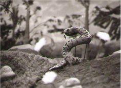 Ako utekala vretenica kľukatá, 20´, 1978 Bábková inscenácia rozprávky Ondreja Sliackeho podľa predlohy Ruda Morica. Lesné zvieratká vyženú z lesa zlú vretenicu, ktorá ohrozovala novonarodených drozdov i ostatné zvieratká. Výtvarník: Pitr Jiří Réžia: Šebová Lucia