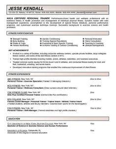 Commercial Airline Pilot Resume CV Pinterest Airline Pilot