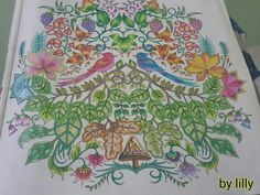 Floresta encantada pássaros  Floresta encantada  Jardim secreto