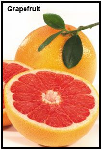 Grapefruit essential oil and extract in herbal medicine