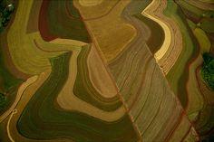 YannArthusBertrand2.org - Fond d écran gratuit à télécharger || Download free wallpaper - Cultures sur les bords du rio Uruguay, province de Misiones, Argentine (27°24' S - 54°24' O).