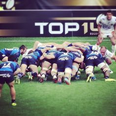 MHR Top 14, Rugby, Montpellier, Touch, Instagram Posts, Sports, Hs Sports, Sport, Football