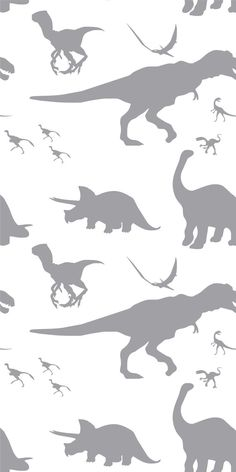 Self-adhesive Removable Wallpaper Dinosaurs by EazyWallpaper