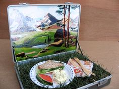 DIY Picnic in a Suitcase by Paige via designsponge: For all your park time needs.