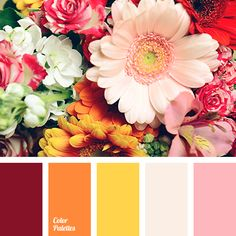 amber color, bright yellow color, burgundy color, dark yellow color, lemon color, light pink color, light yellow color, monochrome yellow palette