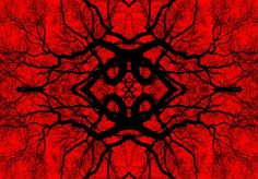 Frikkx - Second Series in Red - Image 17