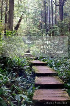 photograph of wooden stairs leading up into a forest with a motivational quote. self care. Words Quotes, Life Quotes, Living Quotes, Sayings, Great Quotes, Inspirational Quotes, Motivational, Mother Nature Quotes, Forest Bathing