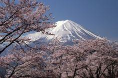 写真部の「日本の風景」