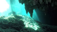The Yucatan Peninsula is rife with deep, sometimes creepy and hauntingly beautiful underwater caves called cenotes. Some have multiple layers of fresh water, seawater, stalagmites and stalactites and even trees. Many remain undiscovered and their depths unexplored. Freediver and scuba instructor Julien Borde, of Playa Del Carmen, explores this subterranean world for a living. Dive deep, hold your breath and don't forget to open your eyes.