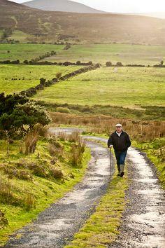 Ireland, Tipperary, Clonmel, Joe Condon, Omega Beef, Galloway Cattle Breeder. Clashavaugha. Ballymacarby. Landscape