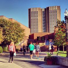 kent state university in ohio