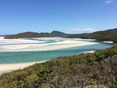 Walk the bushwalks the fun and cheap way. Let nature wrap you in its calming arms through this activity. Know more about this exciting #tour at http://www.backpackingairliebeach.com/?page_id=7 #travel #tours #AustraliaTours #backpacking #bushwalks