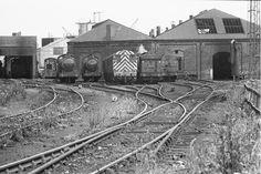 Tom Youngs, Live Steam Locomotive, North East England, British Rail, Steam Engine, Sunderland, Past, Transportation, Arch