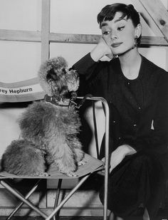 "Audrey Hepburn on the set of ""Sabrina"" with her co-star, David the Poodle {and not David Larreby the heel}"