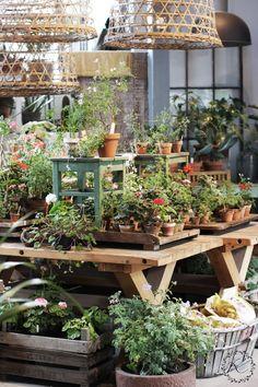 KUKKALA: #zetas ( I love the use of stools, old boxes, baskets and wood trays)