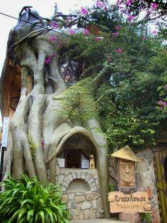 Unusual Places To Visit -  Dalat Crazy House - Vietnam