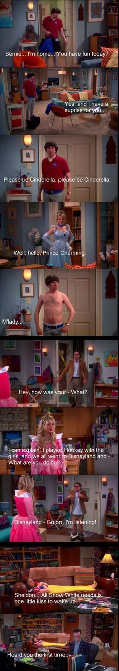Disneyland Big Bang Theory, this depicts the characters so well!