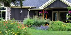 a variety of day lilies fill this front space and add splashes of colour