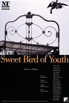 Sweet Bird of Youth by Anonymous